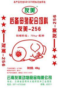 bob手机版-256后备母猪料